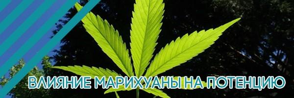 Влияние марихуаны на потенцию