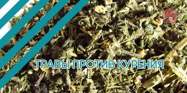 Травы против курения